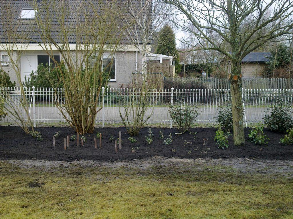 Tuinaanleg op maat met beplanting
